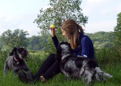 DROP INS - dog cuddles